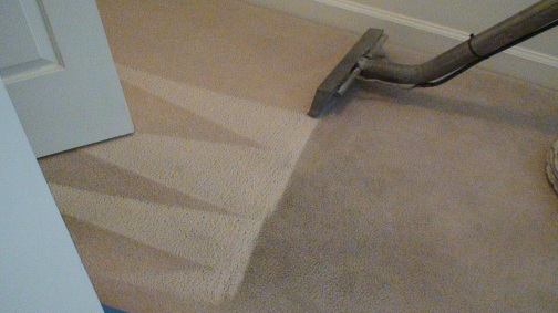 carpet-cleaning-5