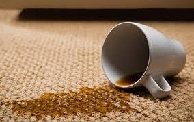 clean-la-best-carpet-cleaning-in-los-angeles-copy